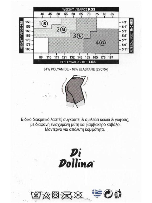 di dollina 4020 2